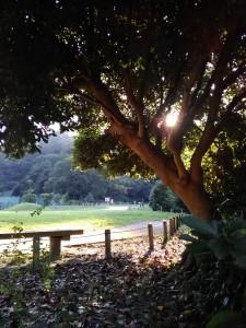 永福寺跡近くの公園